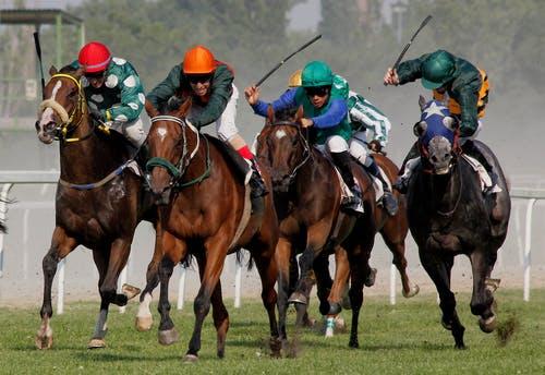 Singapore Sport Bets